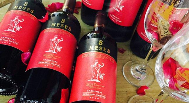 智利红酒生意要多少钱